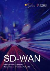 SD WAN Scale Agility Robustness.pdf