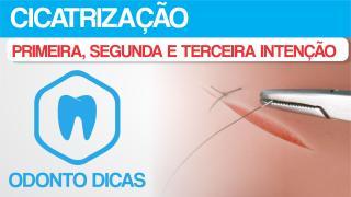 ROTEIRO CICATRIZACAO.pdf